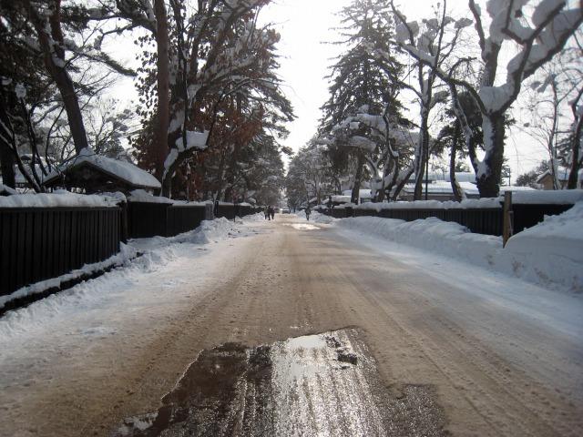角館 武家屋敷通りも雪化粧