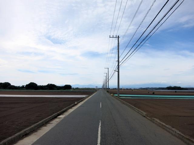 黒崎の鼻方面に伸びる滑走路跡