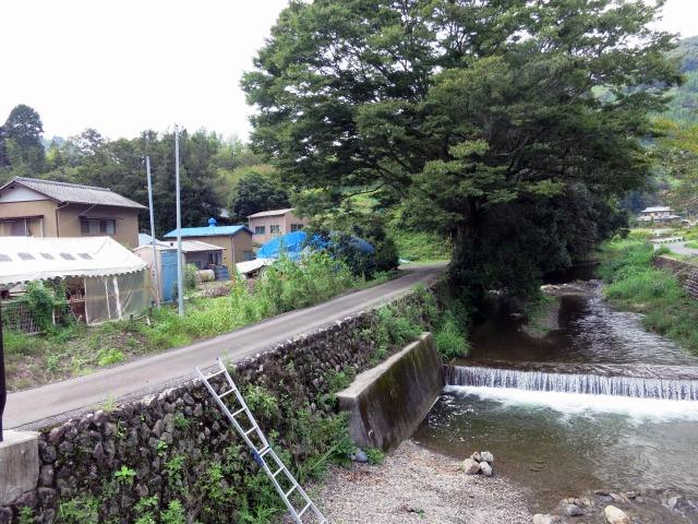 瀬戸川水系滝之谷川