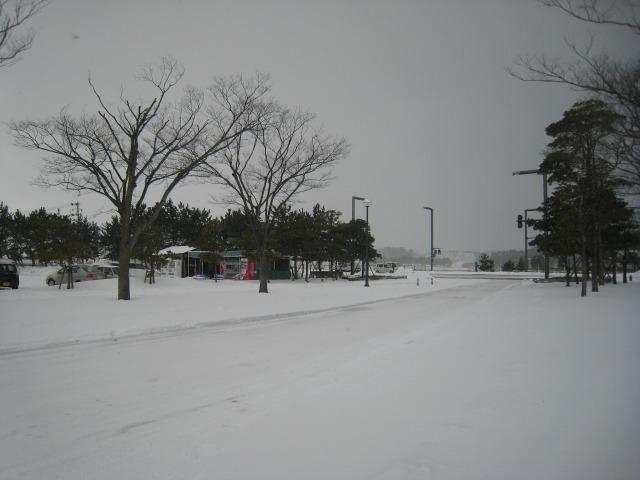 酒田市 土門拳記念館バス停にて