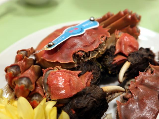 赤い甲羅に覆われた上海蟹