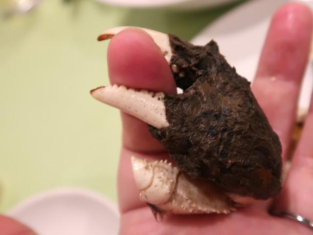 恐怖! 上海蟹の逆襲!